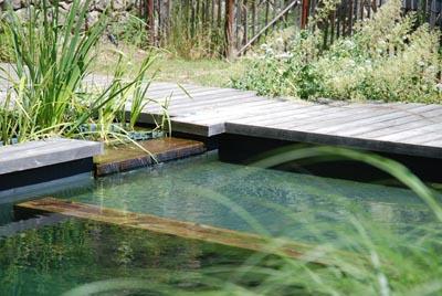 Implantation int gration r alisation d une piscine for Jardinier paysagiste herault